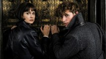 'Fantastic Beasts 3': Warner Bros. Boss Has Plans For Better Sequel