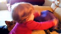 Funny Cats Annoying Babies and Babies Annoying Cats (prt 05)  - Youtube