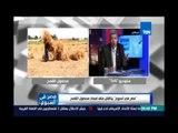 د.سعيد خليل : الفساد والتلاعب في قوت الشعب المصري  المعلن في مصر أكبر 100 مرة من الفساد المخفي