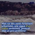 Possibilité d'un tsunami, Partager une course de taxi, Météo dingue: voici votre brief info de ce jeudi après-midi