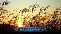 【東方閃電】朗読 聖霊が諸教会に語られた御言葉「あなたは誰に忠実か」 日本語