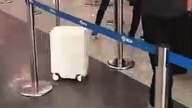 This luggage follows you