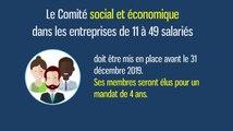 Le Comité social et économique dans les entreprises de 11 à 49 salariés