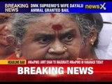 DMK supremo's wife Dayalu Ammal granted bail
