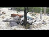 Himachal Pradesh flood: Highways shut and livelihood badly affected due to heavy rains