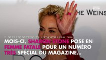 Sharon Stone : l'actrice de Basic Instinct pose topless pour le magazine Vogue