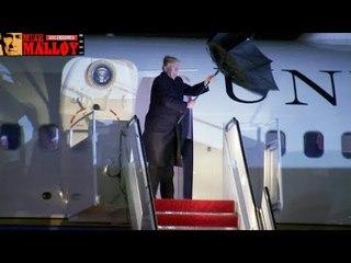 Donald Trump's Week of Utter Chaos