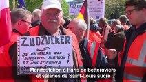 Sucre: les betteraviers de Saint-Louis manifestent à Paris