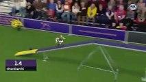 Shrek fait une course d'agility