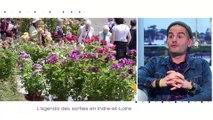 TILT - 07/05/2019 Partie 3 - L'agenda des sorties en Indre-et-Loire