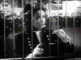 Delightfully Dangerous (1945) - (Drama, Family, Musical, Romance)