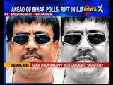 Bihar elections: Ahead of Bihar polls, rift within BJP