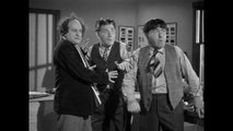 The Three Stooges Rip, Sew and Stitch E150 Classic Slapstick Comedy