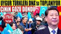 Çin İyice Zıvanadan Çıktı 35 MİLYON TÜRKÜN DNA'sını TOPLUYOR Çin Türkiye Krizi Kapıda..