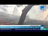أخبار TeN - مصر تعرب عن خالص تعازيها في ضحايا حرائق الغابات في اليونان