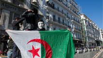 Algeria Protests See 183 Injured