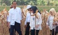 Tak Cuti Total, Jokowi: Aturan KPU Bolehkan Saya Kerja