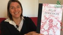 Interview 1 de Emmanuelle Pouydebat : L'éléphant, le meilleur des journalistes météo!