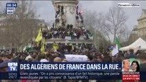 """Des Algériens de France manifestent pour dire """"non"""" à un 5e mandat d'Abdelaziz Bouteflika"""