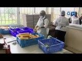 RTG/Lancement des activités au restaurant universitaire Omar Bongo