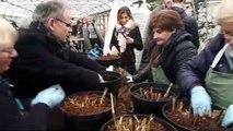 Reprise des ateliers jardinage Les Mardis aux serres à Nancy