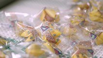 Meet the Guy Who Writes Your Fortune Cookies
