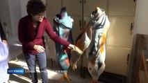 Modes d'emplois - La Creuse : une terre de laine et de textile