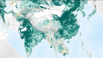 Earth is Greener Than 20 Years Ago