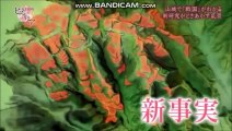 NHK 歴史秘話ヒストリア 山城 戦国を動かす 大名と家臣は平等な関係だった 2019 01 30