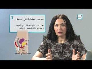 Alyaa Gad - Vaginismus التشنج المهبلي