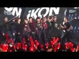 [MPD직캠] 아이콘 직캠 DUMB & DUMBER iKON Fancam @엠카운트다운_160121