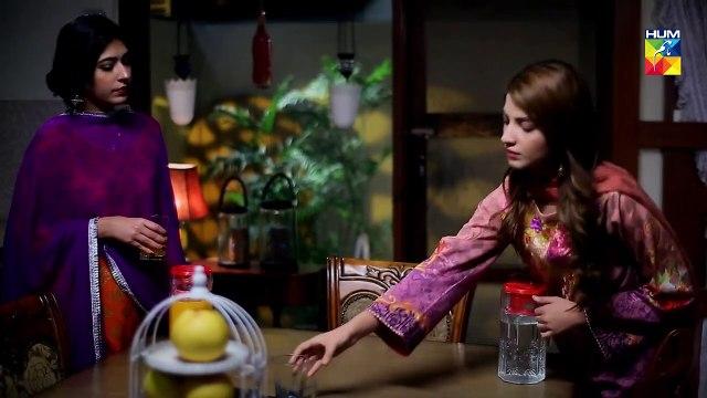 Tu Ishq Hai Epi 30 HUM TV Drama 7 March 2019