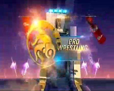 PWL 4 Final_ Ravi Kumar vs Nitin Rathi _ Haryana Hammers vs Punjab Royals _