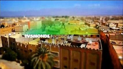 TV5MONDE - Pacote gráfico (2013-presente)