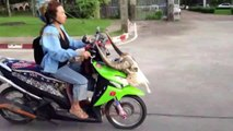 Epic Motorcycle FAILS & WINS Bike Videos Compilation __  LPE360 Funny Fails