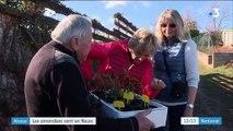 Alsace : les amandiers sont en fleurs
