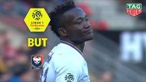 But Casimir NINGA (20ème) / Stade Rennais FC - SM Caen - (3-1) - (SRFC-SMC) / 2018-19