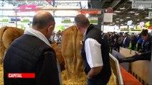 """Un responsable """"boucherie"""" d'un supermarché visite le salon de l'agriculture et ses réflexions ne plaisent pas aux internautes - Vidéo"""