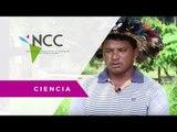 Cooperativa IndÍgena se enfrenta a mafias del Amazonas - BRA - EFE / Ciencia / NCC 27 / 12 02 18