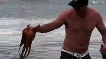 Un homme sauve une mouette d'être noyée par une pieuvre