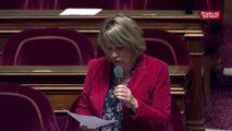 """Loi anti-casseurs: Cette loi n'aura aucun effet"""" assure Maryse Carrère (RDSE)"""