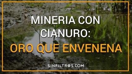 Minería con cianuro: oro que envenena | Sinfiltros.com