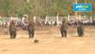 Vietnam's elephant race draws cheers, and critics