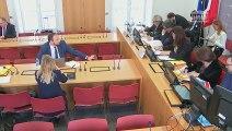 Commission du développement durable : Projet de loi d'orientation des mobilités - Mercredi 13 mars 2019