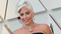 Lady Gaga's Makeup Artist Shows Off Look From A Star Is Born