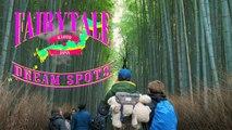 Voyage de rêve : la forêt de bambous de Kyoto