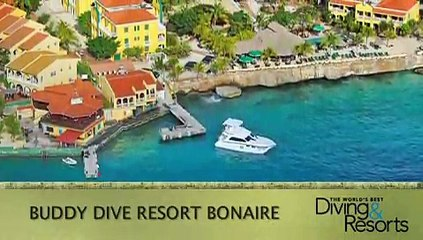 2013 World's Best Diving & Resorts: Buddy Dive Resort Bonaire