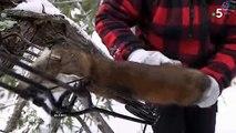 """Polémique : """"Echappées Belles"""" rencontre un trappeur qui apprend à ses enfants comment tuer les animaux pour leur fourrure - Regardez"""