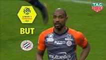 But Souleymane CAMARA (90ème +1) / Olympique Lyonnais - Montpellier Hérault SC - (3-2) - (OL-MHSC) / 2018-19