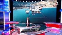 """En Russie, une """"prison à baleines"""" enferme des cétacés (en attendant leur vente à la Chine)"""